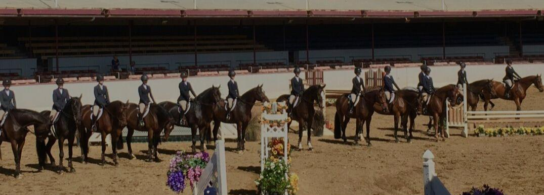 Sport Psychology In The Equestrian World